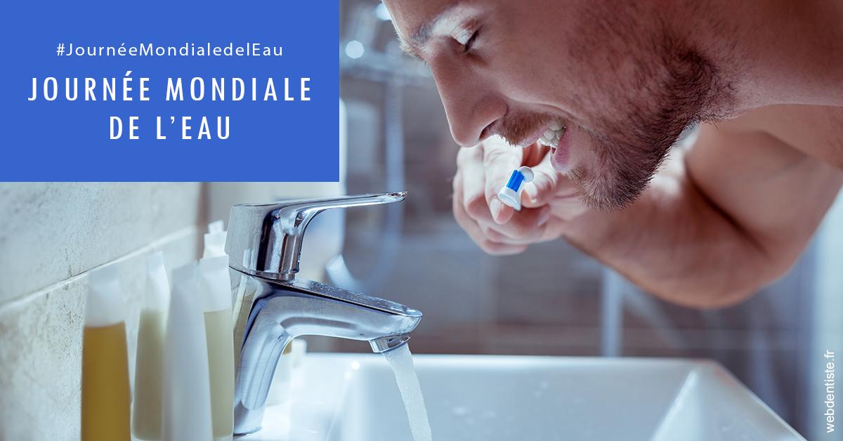 https://dr-aubry-marie-pierre.chirurgiens-dentistes.fr/Journée de l'eau 2